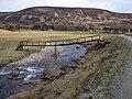 Footbridge in Glen Isla - geograph.org.uk - 165798.jpg