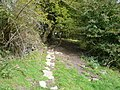 Footpath - View towards Cripton Lane - geograph.org.uk - 570644.jpg