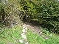 Footpath - View towards Cripton Lane - geograph.org.uk - 570644.jpg
