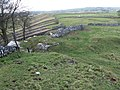 Footpath along Litton Edge - geograph.org.uk - 1618045.jpg