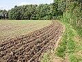 Footpath along field edge, from Monkton - geograph.org.uk - 963183.jpg
