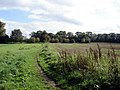 Footpath to Alkborough - geograph.org.uk - 248490.jpg