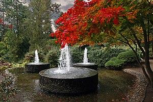 Image of Forstbotanischer Garten Köln: http://dbpedia.org/resource/Forstbotanischer_Garten_Köln