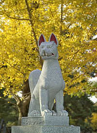 الثعلب الاحمر 200px-Fox0290.jpg
