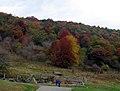 GH - Visitors in fall (3745577073).jpg