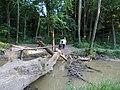 Gaja patak, átkelő - panoramio.jpg