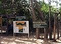 Gambia abuko 001.jpg