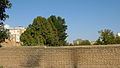 Garden Way - Wall - trees - streamlet - 17 Shahrivar st - Nishapur 42.JPG