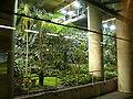 Gare de Lyon 14 Jardin exotique.JPG