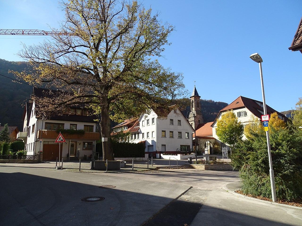 Gebäude und Ansichten von Honau 25.jpg