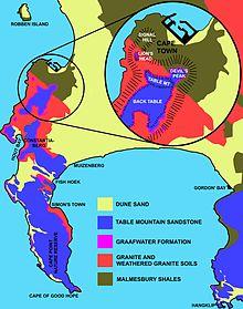 Table Mountain - Wikipedia