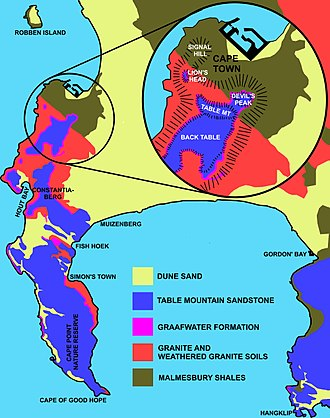 Geology of Table Mountain in relation to the geology of the Some of the Cape Peninsula. Geology of Cape Peninsula 1.jpg