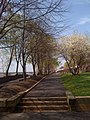 Georgetown waterfront park path.JPG