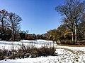Georgia snow IMG 5479 (38252931384).jpg
