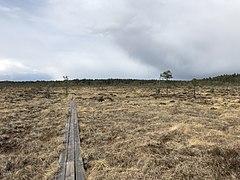 Getapulien Naturreservat.jpg