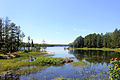 Gfp-minnesota-voyaguers-national-park-cruiser-lake.jpg
