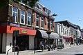 Ginnekenweg Breda P1160423.jpg