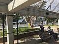 Glenmont Bus Terminal 01.jpg