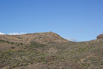 Gran Canaria Barranquillo Andrés (MGK17531).jpg