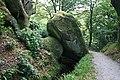 Granite Block over a Leat - geograph.org.uk - 566565.jpg