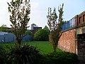 Grass by Clydebank Business Park - geograph.org.uk - 797074.jpg