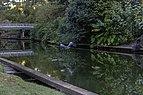 Great Blue Heron 4 NBG LR.jpg