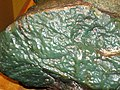 Green nephrite jade ventifact (Precambrian; Crooks Mountain, Fremont County, Wyoming, USA) 2 (24024506363).jpg