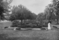 Grounds at Ellerslie Racecourse, Auckland, circa 1910 ATLIB 337405.png