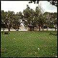 Grupo escolar do Bairro da Madre Deus, Lisboa, Portugal (3365804166).jpg