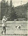 Guns and gunning (1908) (14784505562).jpg