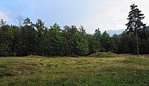 "Hügelgräberfeld nahe der ""Napoleonwiese"" Villach-Warmbad.jpg"