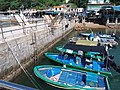 HK 西貢 Sai Kung 清水灣半島 Clear Water Bay Peninsula 布袋澳 Po Toi O Piers n boats August 2018 SSG 12.jpg