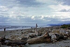 Haast, New Zealand - Haast Beach in 1968