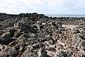 Hachijo-Kojima Island Toriuchi district Lava zone 02.jpg