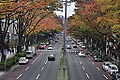 Harajuku - Omotesando 01 (15555117880).jpg