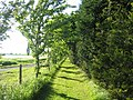 Harbury - Radford Semele footpath - geograph.org.uk - 12865.jpg