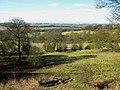 Hardwick Hall Estate - geograph.org.uk - 1175138.jpg