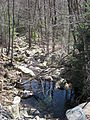 Hawk Falls - Hickory Run State Park - Pennsylvania (7067297451).jpg