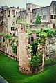 Heidelberg Castle Ruined Wall (9813280344).jpg
