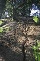 Hiking Towsley Canyon - Santa Clarita, California (3360663825).jpg