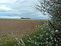 Hill Farm, Burton Fleming - geograph.org.uk - 394967.jpg