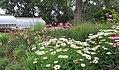 Hillwood Gardens in July (19179418424).jpg