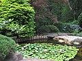 Hillwood Gardens in July (19613984318).jpg