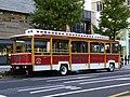 Hinomaru TR-01 Classic Sky Bus Tokyo rear.jpg