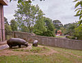 Hippo Enclosure at Edinburgh Zoo 1984.jpg