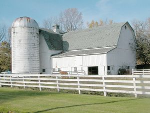 Hobby farm - An old dairy farm has become a hobby farm near Leicester, New York