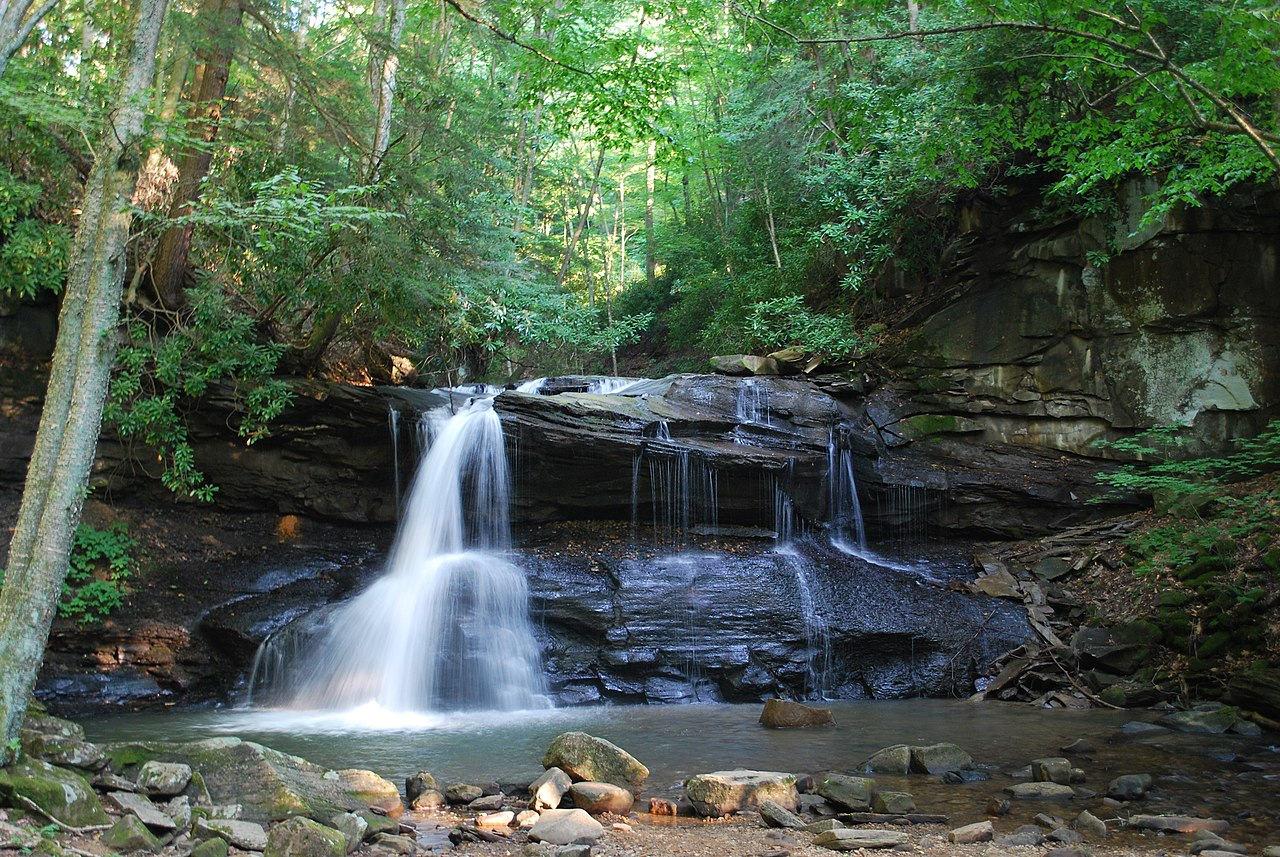 File:Holly River State Park - Upper Falls.jpg - Wikimedia ...