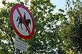 Horses welcome (terms and conditions apply) - geograph.org.uk - 421061.jpg
