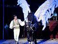 Hungarian National Circus 2013 Richter József Jr..jpg