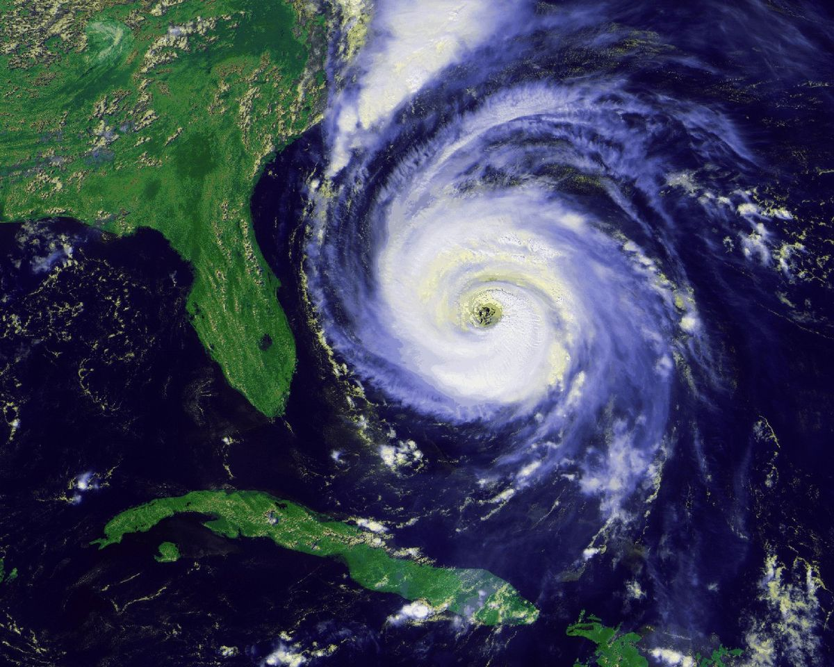 Image Result For Hurricane Michael
